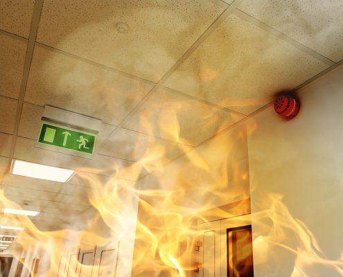 brandwerende verf